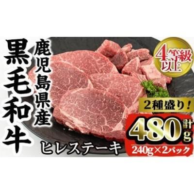 i381 4等級以上鹿児島県産黒毛和牛ヒレステーキ2種盛り(計480g)1つのトレイでステーキとサイコロステーキが楽しめる!【カミチク】
