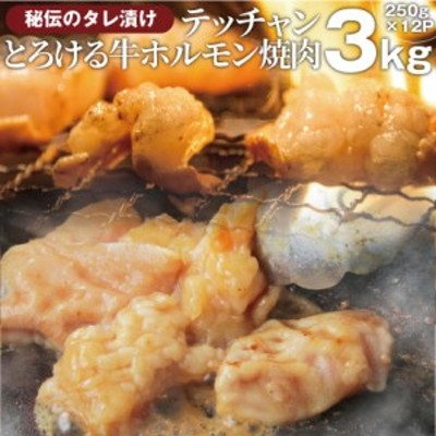 タレ漬け 牛 ホルモン(テッチャン) シマチョウ 3kg(250g×12袋) 焼肉用 焼くだけ バーベキュー タレ 秘伝 焼肉 やきにく アウトドア