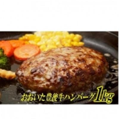 豊後牛ハンバーグ1kg(プレーン)