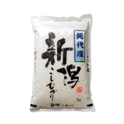 新米 新潟県産 上越矢代産コシヒカリ 白米 5kg 令和2年産