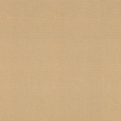 切売 壁紙 輸入壁紙 rasch2020 531367 (Onszelf most fabulous) 無地 メタリック 金 ゴールド
