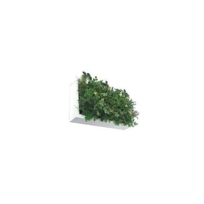 壁掛け観葉植物 壁掛け グリーン フェイクグリーン 壁掛け 観葉植物 壁掛け