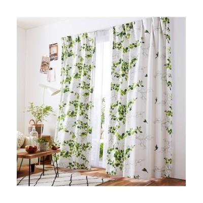 遮光カーテン(小鳥のさえずり) ドレープカーテン(遮光あり・なし) Curtains, blackout curtains, thermal curtains, Drape(ニッセン、nissen)