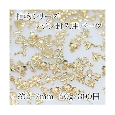 レジン用封入パーツ 植物シリーズ20g