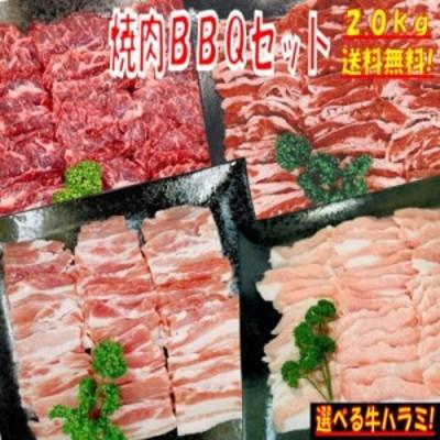 【味付けハラミおまけ付】焼き肉 バーベキュー 食材 BBQ 肉 焼肉セット 牛カルビ 牛バラ 牛ハラミ 豚バラ 豚カルビ 豚トロ バーベキュー