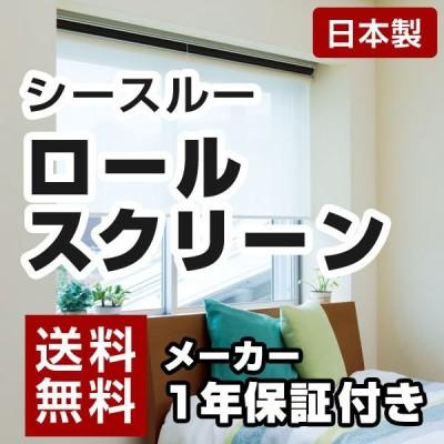 日本製 ロールスクリーン オーダー 1cm単位 シースルー 丸洗いOK 幅25~40cm 高さ30~90cm タチカワブラインドグループ 代引不可
