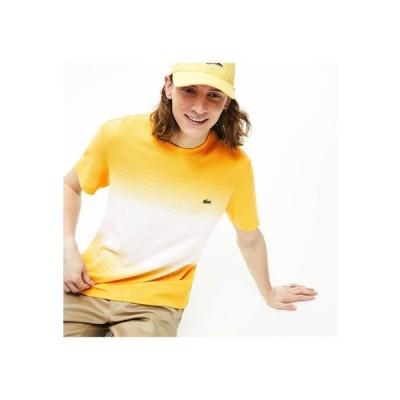 LACOSTE / レギュラーフィットMade In FranceオーガニックコットンピケカラーブロックTシャツ (半袖)
