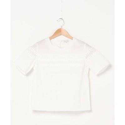 tシャツ Tシャツ 【店舗限定】レースコンビプルオーバー