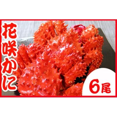 【北海道根室産】花咲かに400g~500g前後×6尾 C-70031