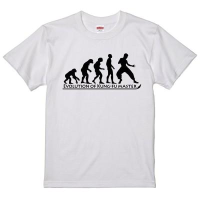 進化 EVOLUTION Tシャツ カンフーマスター 拳法 武術 ブルースリー? 白 ライトベージュに変更可