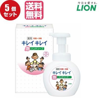 【5個セット販売】ライオン キレイキレイ薬用泡ハンドソープ250ml ノベルティギフト用化粧箱入