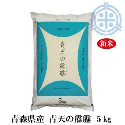 新米 令和2年産 青天の霹靂 (へきれき) 5kg 白米 【真空パック対応】 送料無料