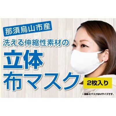 【即時配送可】洗える伸縮性素材の立体布マスク(サイズL)2枚入り