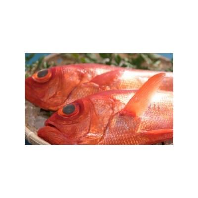 ふるさと納税 RY030高級金目鯛2尾(鮮魚) 高知県室戸市