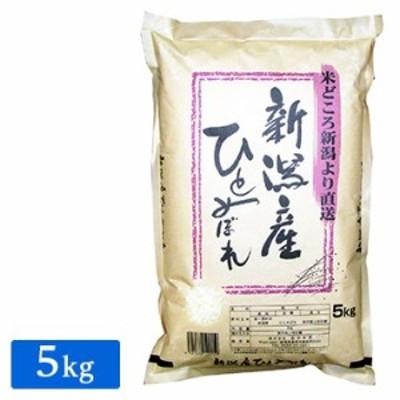 ■【精米】新潟県産 ひとめぼれ 5kg