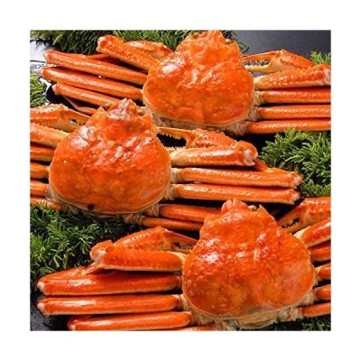 ズワイガニ 650g 姿 ずわいがに姿 本ずわい蟹 ボイル 2尾セット 合計1.3kg さっぽろ朝市 高水