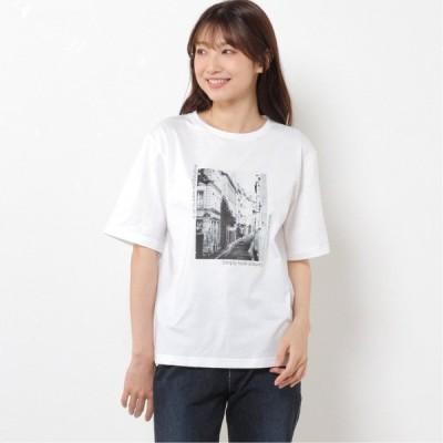 綿100%◎風景画転写プリントTシャツ ホワイト M L