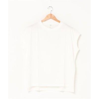 tシャツ Tシャツ [新色追加]U.SコットンTシャツ[NOLLEY'S collet]
