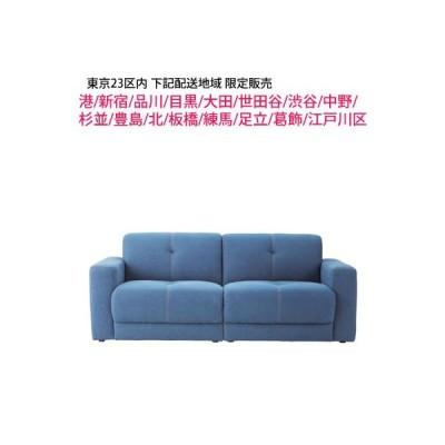 東京23区内限定販売 (台東・墨田・荒川・文京・千代田・中央・江東区以外のお届先) 東谷 (AZUMAYA) Capital sofa キャピタル SS-115DM