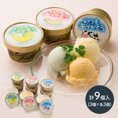 ギフト 北海道 アイス プレゼント いつもありがとうラベル 十勝 アイスクリーム 計9個 スイーツ メロン 贈り物 食べ物 送料無料 SN1003-0700 高級 バレンタイン