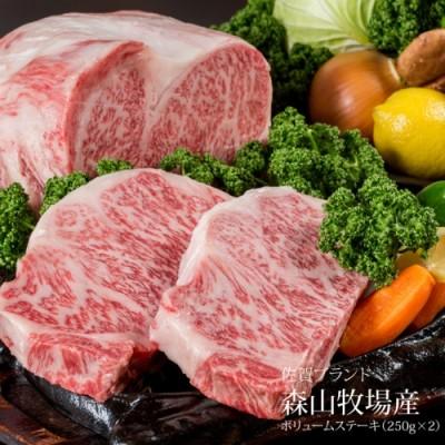 C30-005 森山牧場産 黒毛和牛ステーキ (250g×2)