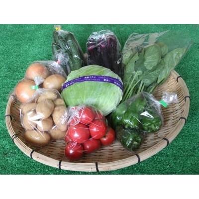 旬の新鮮野菜の詰合せ