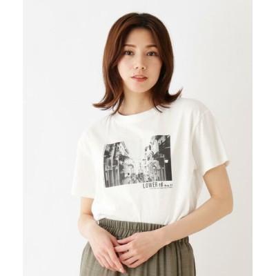 SHOO・LA・RUE/シューラルー プリント半袖Tシャツ ホワイト(002) 03(L)