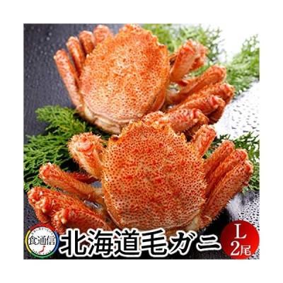 かに 毛がに 特大(2尾入)1kg ボイル かに 北海道産 毛蟹 姿