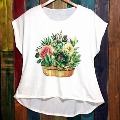 かご多肉 てろてろTシャツ 2020 33 多肉植物 タニラー たにらー 観葉植物