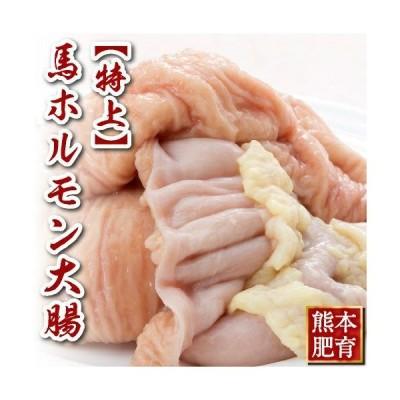 特上 ホルモン 大腸 約500g肉 馬刺し 熊本 馬肉 馬肉 馬刺 ギフト 肉 食べ物 おつまみ 馬刺
