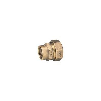 TBC PE継手メネジ1種13mm(1個) 13PGV1 2822881