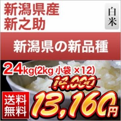 令和元年産(2019年) 新潟県の新ブランド 新之助 白米  24kg(2kg×12袋)【送料無料】【米袋は真空包装】