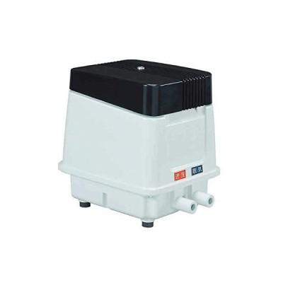 逆洗タイマー付安永 エアーポンプ EP−60E