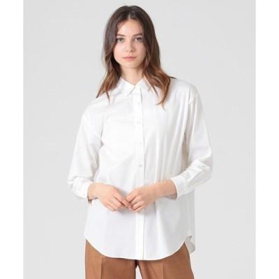 シャツ ブラウス シーアイランドコットンシャツ