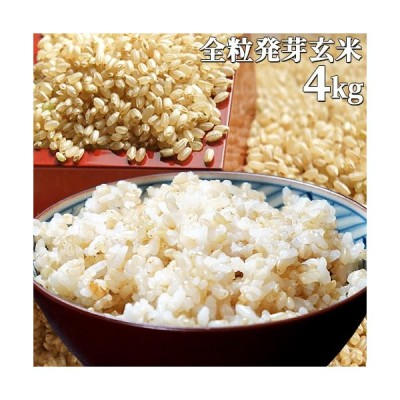 【限定20%オフクーポン】大分県産 無洗米 手作り発芽玄米 4kg(1kg真空パック×4袋) 準無農薬(減農薬) スタリオン日田 送料無料
