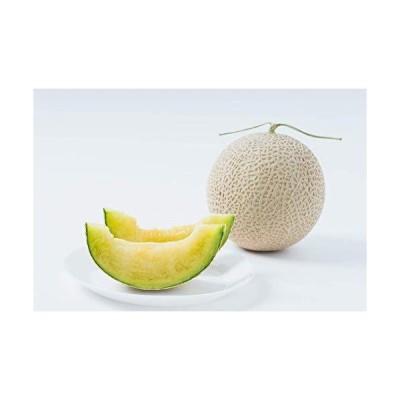 御贈答 フルーツ マスクメロン 静岡 糖度 13.5度以上 選果 父の日 お中元 メロン お祝い (2玉)