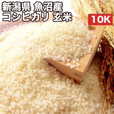 新潟県 魚沼産 コシヒカリ 10kg お米【選べる搗き方 白米・ハイガ米・玄米・8分搗きなど】