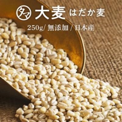 【送料無料】国産 大麦(はだか麦) 250gプチッと弾ける独特の食感と香ばしさはクセになる穀物食べる食物繊維の宝庫な食材 レジスタントス