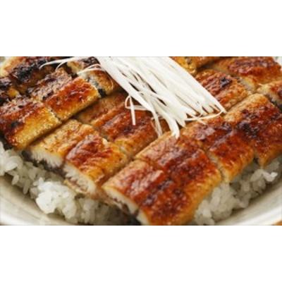 うなぎ ウナギ 鰻 海産品 ギフト セット 詰め合わせ 贈り物 贈答 産直 静岡 静岡焼きうなぎ 内祝い 御祝 お祝い お礼 贈り物 御礼 食品