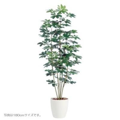 人工観葉植物 シェフレラ150cm 高さ150cm dt98892 (代引き不可)