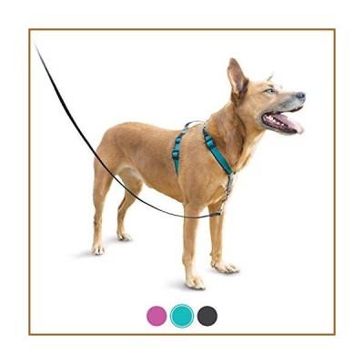 PetSafe 3 in 1ハーネスと車の拘束、ミディアム、ティール、引き抜きなし、調整可能、小型/中型/大型犬のトレー