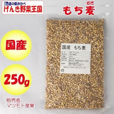 国産 もち麦 250g マツモト産業(群馬県富岡市)【送料別】【NS】