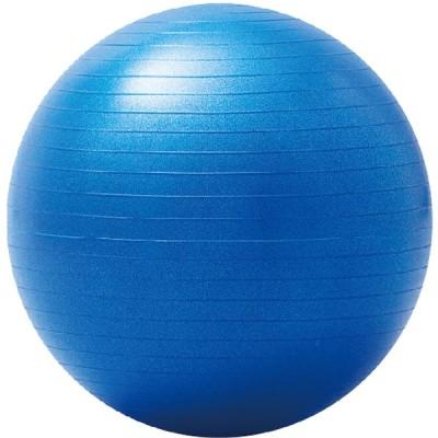HATACHI ハタチ  大きいバランスボール 55cm ブルー NH3031