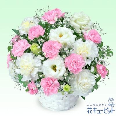 ペット用フラワーギフト・お供え ペット 供花花キューピットのお供えのアレンジメント