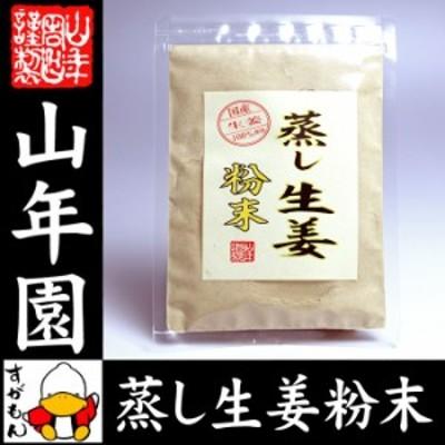 【国産 無添加 100%】【30分間蒸した生姜のみ使用】蒸し生姜 粉末 45g 熊本県産 蒸ししょうが 蒸しショウガ 送料無料 お茶 お年賀 御歳暮