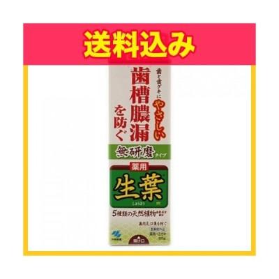 【医薬部外品】生葉 薬用ハミガキ 無研磨タイプ 95g