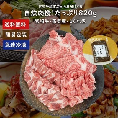【送料無料】自炊応援!宮崎牛&茶美豚820gセット