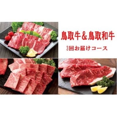 TT01:鳥取牛&鳥取和牛堪能♪焼肉コース【3回お届けコース】
