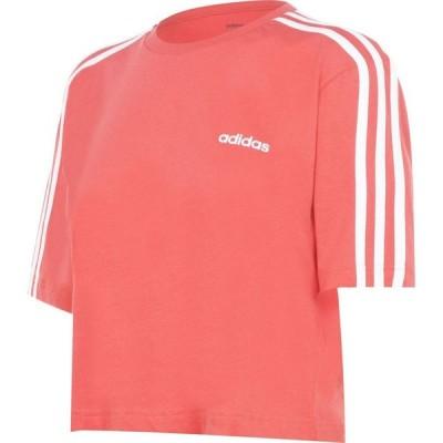 アディダス adidas レディース フィットネス・トレーニング Tシャツ トップス 3S Crop T Shirt Glory Red