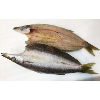 地魚厳選 特カマスひらき